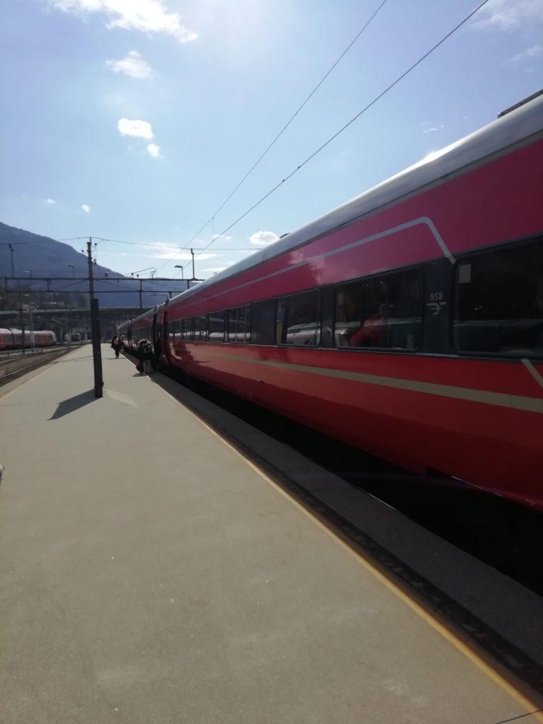 Train Bergen Oslo Norvège